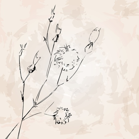 Abstract flower background  Dandelion  Vector