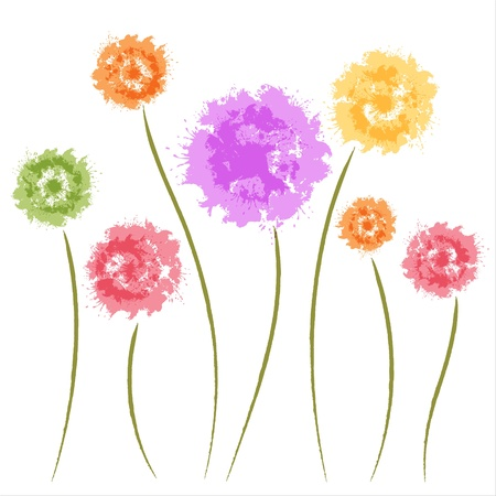 flowers fluffy: Dandelion flowers  Watercolor  Greeting card Illustration