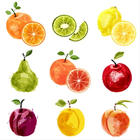 durazno: jugosas frutas maduras-2 Vectores