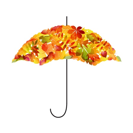 rainy: Autumn background  Umbrella of leaves