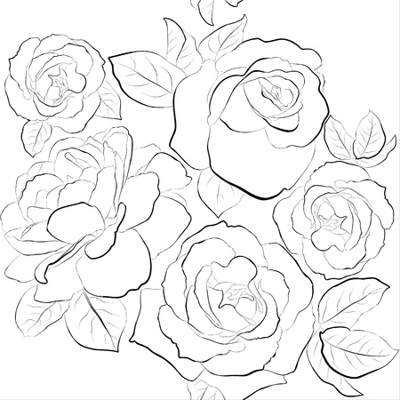 Beautiful seamless background with roses  Black and white pattern Stock Vector - 16855597