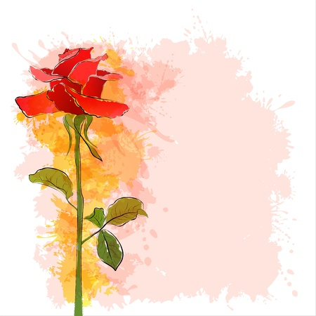 Beautiful vintage red rose  EPS10 Vector