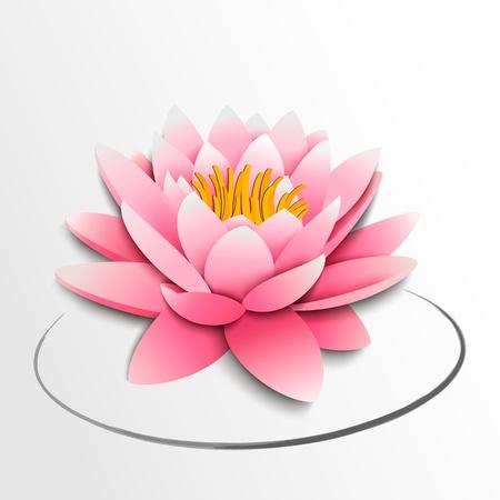 Pink lotus flower Papier Ausschnitt Darstellung Standard-Bild - 18846118