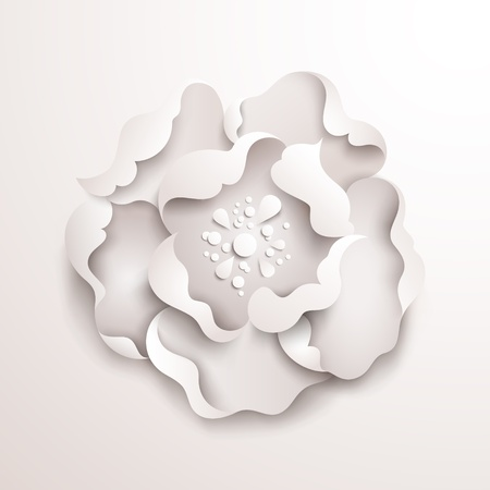 Abstract floral background  White paper flower  Vector design