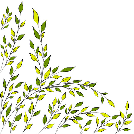 Spring or summer tree branches  Vector background