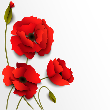 Red poppy flowers. Paper floral background