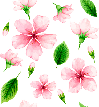 Cherry blossom seamless pattern of pink flowers and green leaves on white background. Illustration