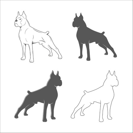 Silhouette of the dog isolated on a white background. Boxer breed. Vector illustration