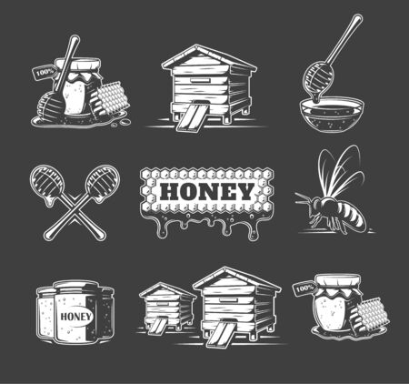 Set of elements of the honey isolated on black background. Symbols for honey design labels and emblems. Vector illustration Иллюстрация