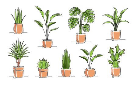 Set of continuous one line drawing of a flowers in a pots. Beautiful flowers isolated on a white background. Vector illustration