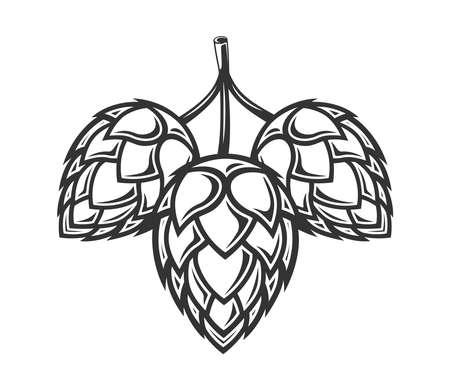 Hop isolated on white background. Design element. Vector illustration