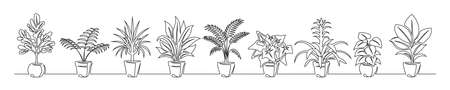 Set of continuous line drawing of a flowers in a pots. Beautiful flowers isolated on a white background. Vector illustration Illustration