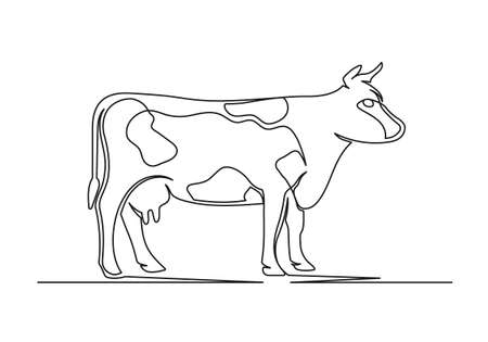 Continuous one line drawing of an cow. Farm concept. Cow isolated on a white background. Vector illustration 矢量图像
