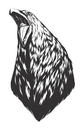 cuervo: Cabeza de cuervo. Logotipo monocromático para su camiseta.