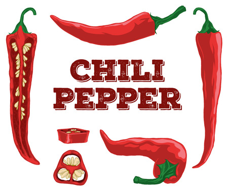 red chili pepper: Chili pepper hand-drawn set isolated on a white background. Illustration