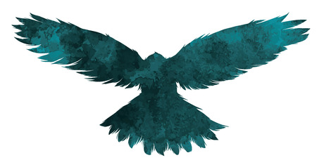 multiple exposure: Bird textured silhouette.Vector illustration.