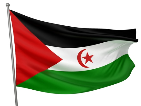 sahrawi arab democratic republic: Western Sahara (Sahrawi Arab Democratic Republic) National Flag  | All Countries Collection - Isolated Image Stock Photo
