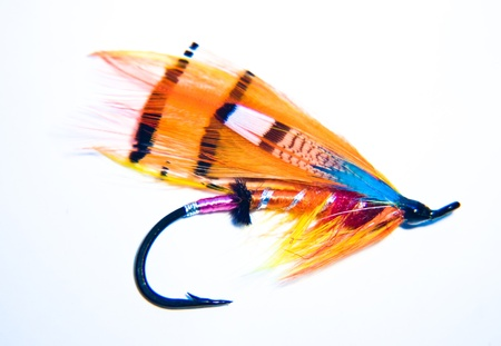 fishing bait: Fishing Fly Stock Photo