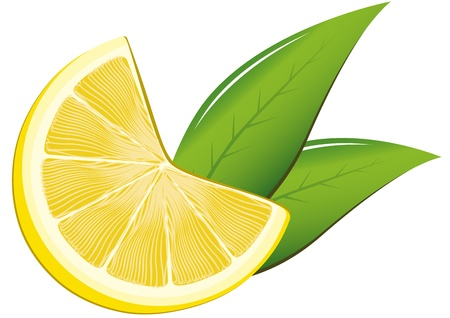 Lemon and leaves Stock Vector - 13015970
