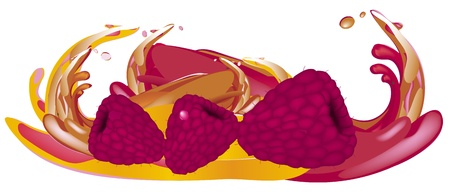 Juice splash Stock Vector - 13250402