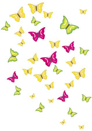 swarm: Butterfly swarm