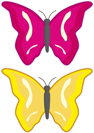 to flit: Two butterflies