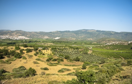 Landscape View of valley photo