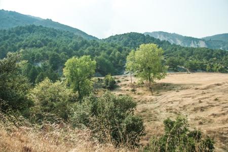 olimpo: Vistas a la monta�a - Parque Nacional Olympus Foto de archivo