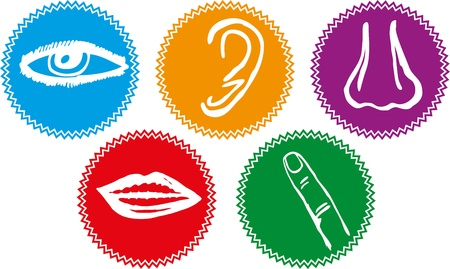 senses: Five senses icon set