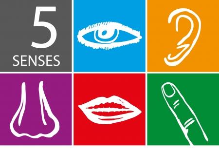Cinco sentidos conjunto de iconos - Ilustraci?