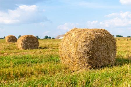 Haystacks in the field photo
