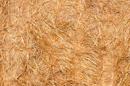 haystacks: Haystacks texture