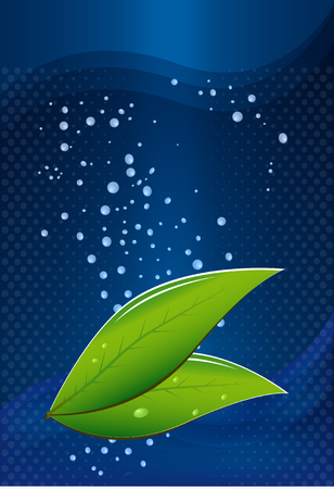 green tea leaves: Green tea leaves on a blue background with water drops Illustration