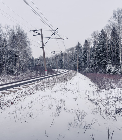 forest railway: Snow covered railway crossing among the forest Stock Photo