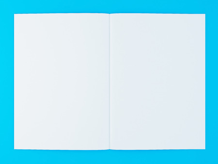 3d Illustration Of Blank Brochure Template On Color Background Stock