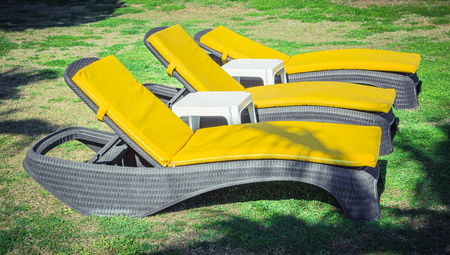 Yellow sun loungers on the lawn Standard-Bild