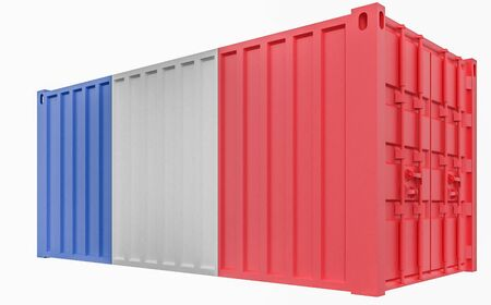 3D Illustration of Cargo Container with France Flag