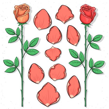 rosas negras: rosa y p�talos aislados hechos a mano en el estilo de dibujo. Bosquejo de la flor. P�talos de rosas para las tarjetas de dise�o y carteles, collages y presentaciones, dise�o web, fondo. El dise�o retro. Estilo vintage.