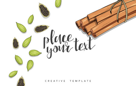 allspice: Beauty background with spice, cinnamon, cardamom , cloves , allspice in sketch. Stylish background template in red. Design, invitations , wedding cards. Elegant design with spice. Culinary pattern