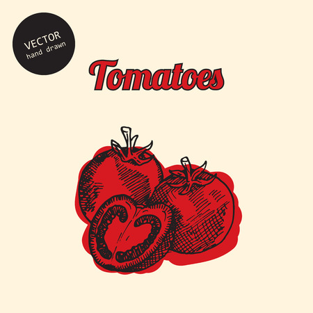 consist: Vector tomatoes. Background consist of colored tomatoes. Sketch art style.