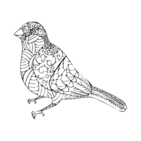 illustration of abstract bullfinch with lines and curves.