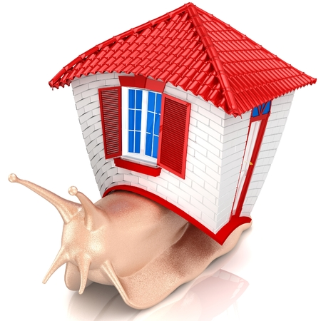 gastropod: 3D Snail with small house. Isolated on white background. 3D render. Stock Photo