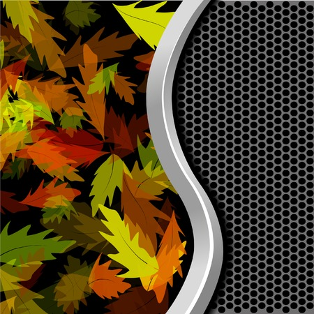 chokeberry: Vector abstract background.  Illustration