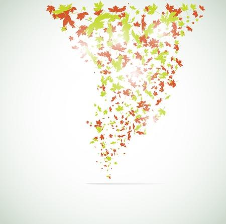leaf background: Vector maple leaf background.
