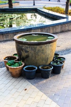 Big Pot lotus  and plastic pots small. photo