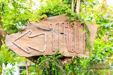 sign wood message is entranceby thai Language Stock Photo - 18139444