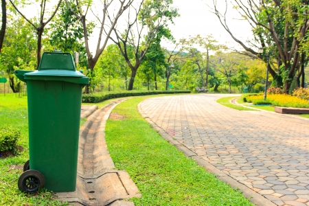 The trash green in garden , around  see in area