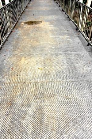 Bridge made buy steel for people cross to garden. Stock Photo - 20219908