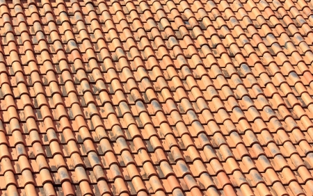 Roof orange on sun have strong and beautyful photo