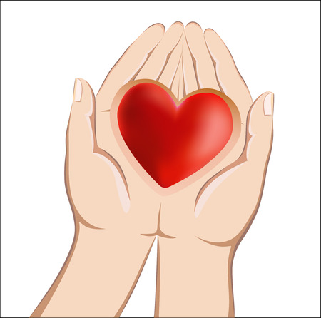 Red heart lying in the hands of Stock Vector - 27560291